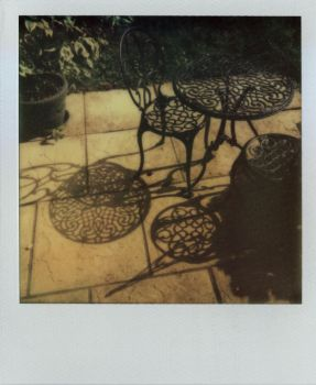 Trying out polaroids 3 by tilsley
