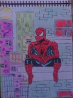 Spider Man by Megasc0rpion