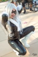 Black Cat by felidaepounce