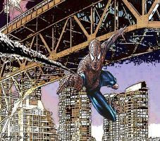 Spidey in Vancouver by Chidog-01