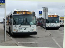 Remembrance Day Buses by daanton