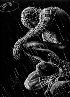 Spiderman by Herrickk