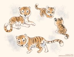 Tiny Tigers by LCibos