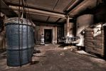 Filter Plant by stengchen