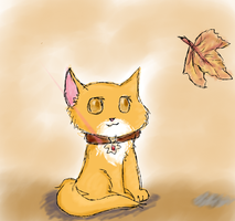 Mezo The Kitty Of Autumn by Drizzle-The-Glaceon