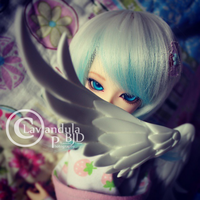 Instagram greetings by Lavandula-BJD