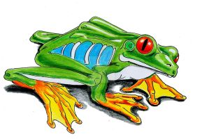 33-frog by marsh1969
