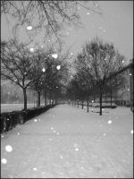 snow and the city by bobiancart