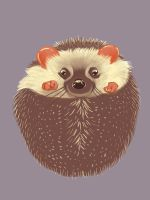 hedgie by Followthepaws