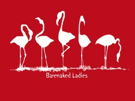 Red Flamingos by mci021
