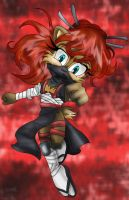 Request: Ninja Sally by Moon-Shyne