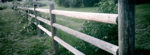 Fences by divine-royalty
