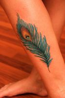 Peacock Feather by SierraKay
