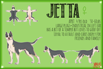 Jetta Reference Sheet by Xandrium