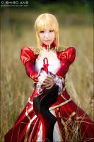FATE EXTRA - 03 by shiroang