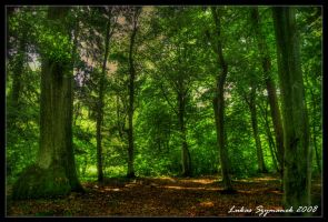 The Green Trees by TimeCapTurer