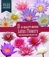 21 High-Res Lotus Flower Photoshop Brushes by fiftyfivepixels