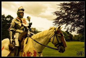 Knight in Shining Armour by SnapperRod