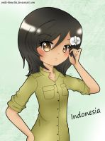 Request: Indonesia~ by smile-himechii