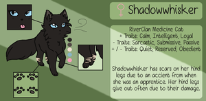 .:REFERENCE:. Shadowwhisker by JewelyCat