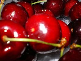 cherries 1 by yadypoo