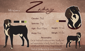 Zachary Reference Sheet by Chel-Zee