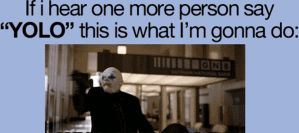 if i hear one more person say YOLO this is... by PandahHero