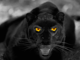 The Pantherman Sees You by supersandra