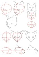 Cat Tutorial - Head by PerianArdocyl