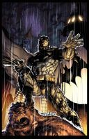 Batman By Jim Lee   Flats By Trinitymathews XGX by knytcrawlr