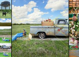 Stock images use to create Turnip Truck Artwork by LadyCarolineArtist