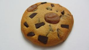 Faux Cookie with Chocolate Chips and Rasins by Aya-no-Shrink-Ray
