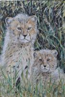 cheetah cubs on watch by acrylicwildlife