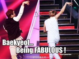 Baekyeol_Fabulous_MACRO by dancingdots