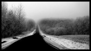 Winter Road by oxystyle