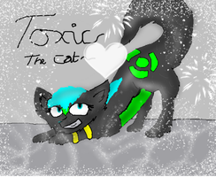 Toxic the Cat-- REQUESTED GIFT by xXDragonVOLTRAXx