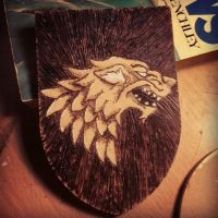 Pyrography attempt 1 by TaksArt