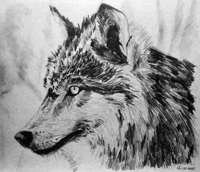 Wolf by Nicksman24