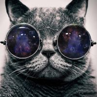 Cat with Space Glasses by FRZHdzn
