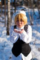 Finland - Snowflakes by Doffi