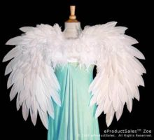eps Zoe Angel Wings Back view2 by eProductSales