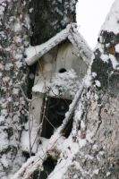 Snowcovered Birdhouse by FoxStox