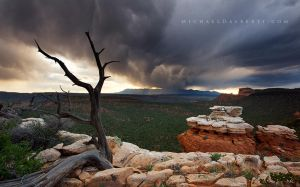 Kolob Terrace by michael-dalberti