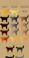 Cat Pelt Colors Guide by lilwyverngirl