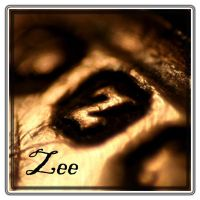 Zee logo 2 by evelynzee