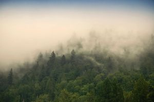 misty mountain weather 18 by JasonKaiser