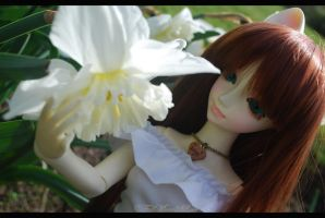Welcome Spring. by FallMoonlitRose