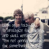 Liam Payne and Niall Horan by 1Dluverrr2708