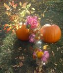 Flowers of the Fall by rayoung