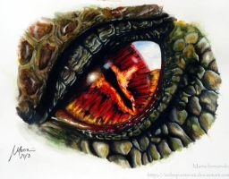 Sauron-Smaug Eye by ochopanteras